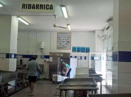 Fish market Rab